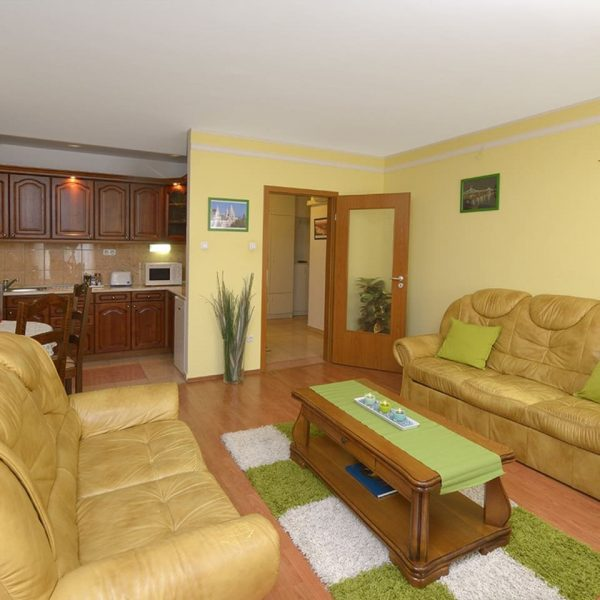 One bedroom Deluxe apartment Green